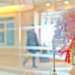Mitä yhteistä on Alzheimerin taudilla ja teknillisellä fysiikalla?