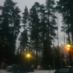 Green Finland