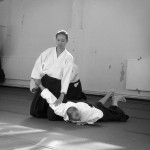 The Art of Peace and Love – Aikido